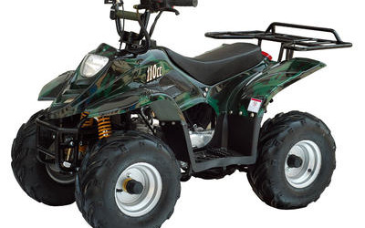 Shadow 110cc ATV